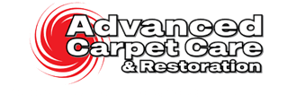 The Best Carpet and Tile Cleaning Services